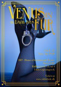 Venus-in-Fur-poster