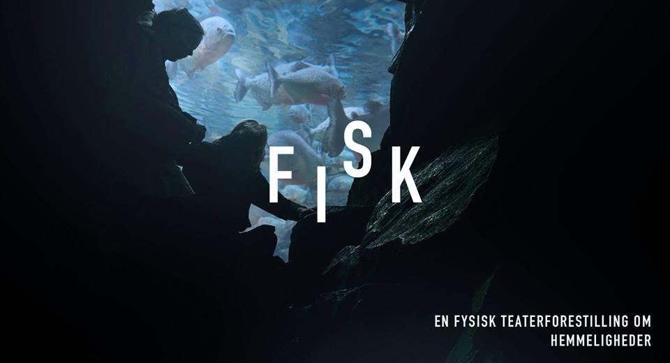 Anmeldelse: FISK, Scenekunst 16/17 fra Akademiet