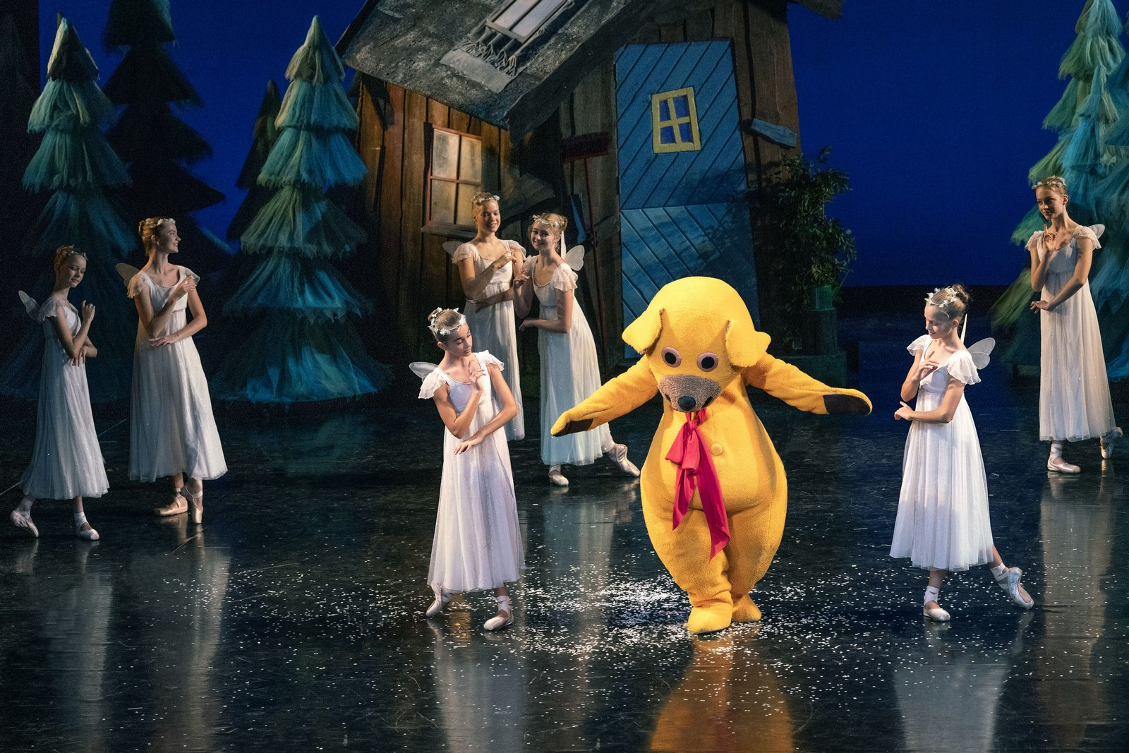 Anmeldelse: Kom Bamse, nu balletter vi!, Det Kongelige Teater