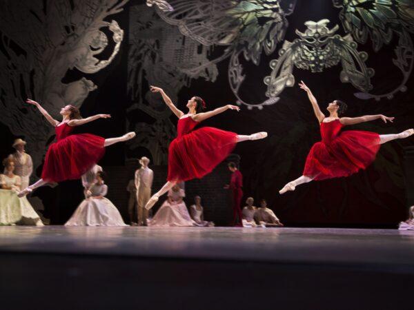 Anmeldelse: Dans2Go 2021/22, Det Kongelige Teater